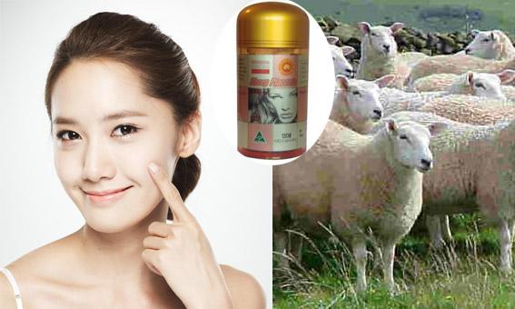 Cách Trị Nám Da Nhanh Chóng Bằng Nhau Thai Cừu