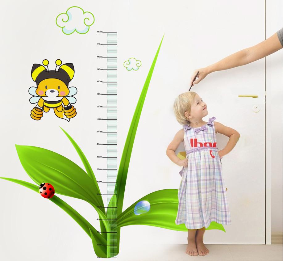 đo chiều cao