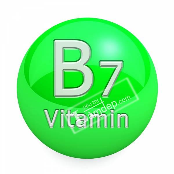 Biotin Là Gì? Công Dụng Của Biotin Như Thế Nào?
