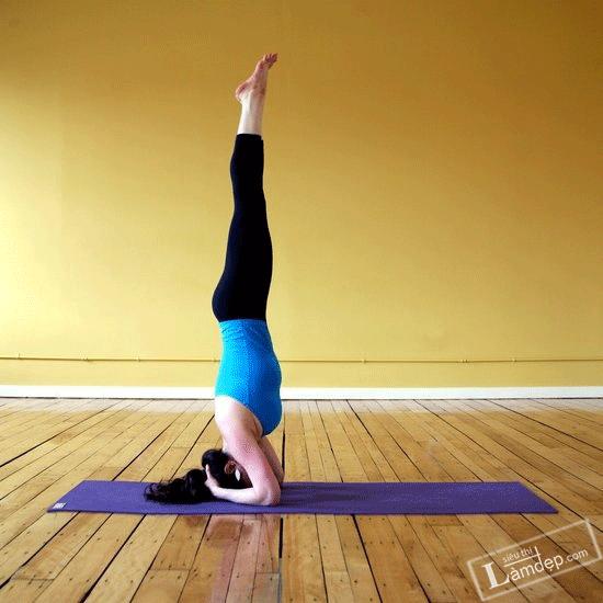 Sở Hữu Mái Tóc Khỏe Mạnh Chỉ Với 4 Tư Thế Yoga Này